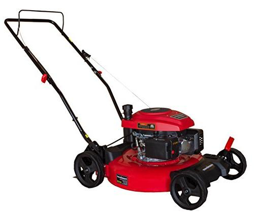 "DB2194C 21"" 2-in-1 Gas Push Mower"